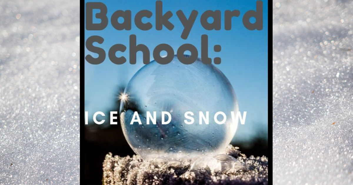 Backyard School : Ice and Snow Image
