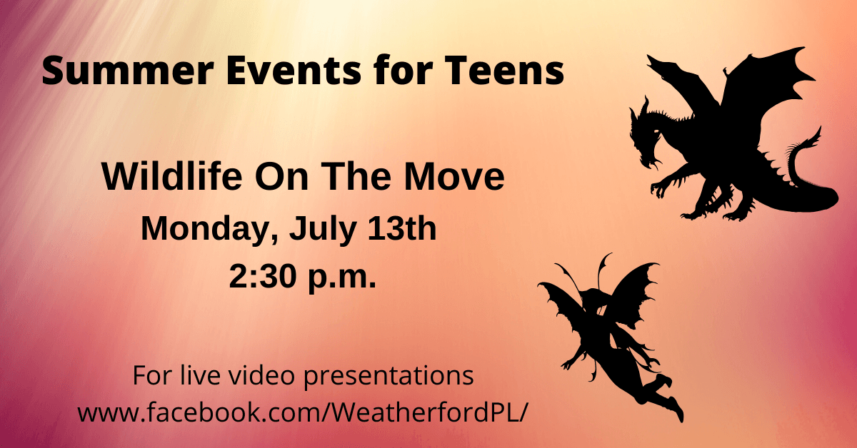 Teen Summer Event: Wildlife On The Move - Click for more information.