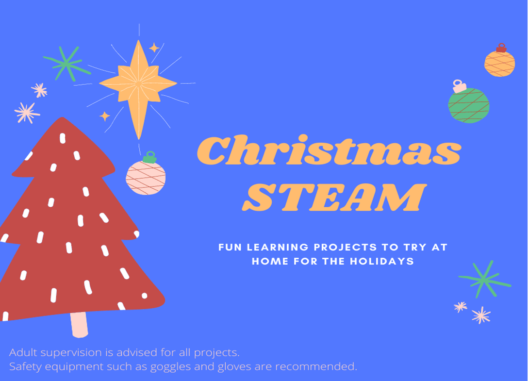 Christmas STEAM Book Image - Click to see PDF.